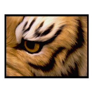 Postal de la foto del tigre