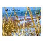 Postal de la hierba de la duna de Michigan
