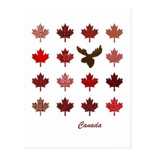 Postal de la hoja de arce y de los alces de Canadá