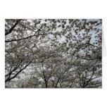 Postal de la imagen de la flor de cerezo del Washi Tarjeton