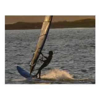 Postal de la imagen del Windsurfer