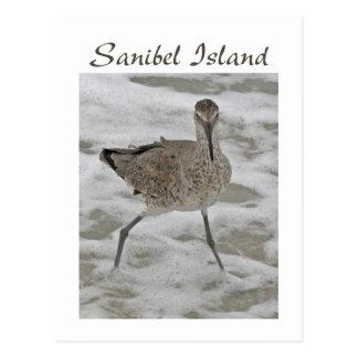 Postal de la isla de Sanibel del gaitero de la are