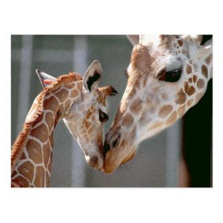 Postal de la jirafa y del bebé