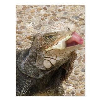 Postal de la lengua del lagarto