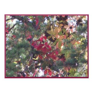 Postal de la llegada del otoño