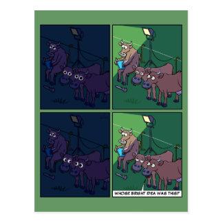 Postal de la luz de la noche de la vaca