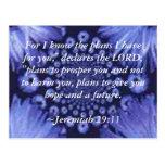 Postal de la margarita azul del 29:11 de Jeremiah