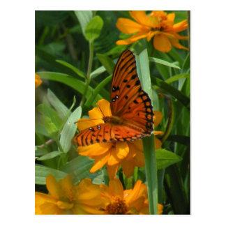 Postal de la mariposa del Fritillary del golfo