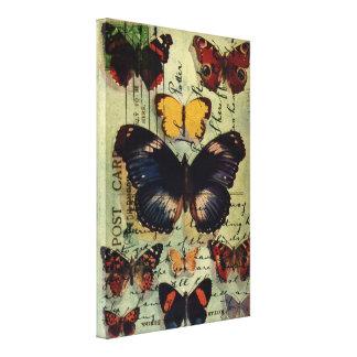 Postal de la mariposa impresiones en lienzo estiradas