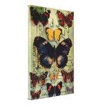 Postal de la mariposa lienzo envuelto para galerias