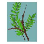 Postal de la naturaleza con arte de las hojas y de