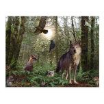 Postal de la naturaleza de la fauna de los animale