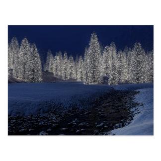 Postal de la noche Nevado