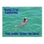 Postal de la nutria de Santa Cruz California