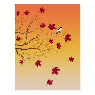 Postal de la perca del otoño