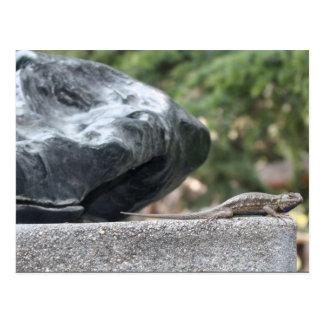 Postal de la piedra y del lagarto