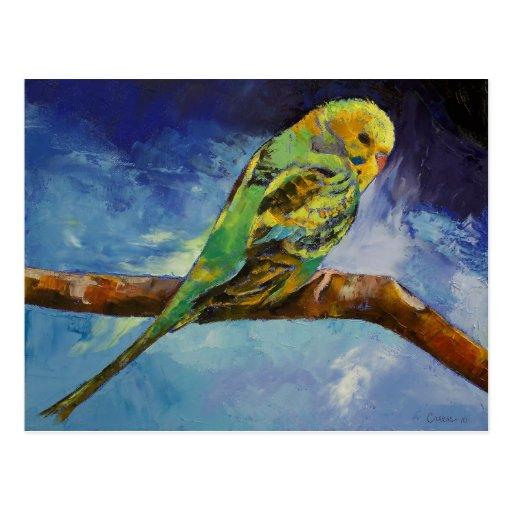Postal de la pintura del Parakeet