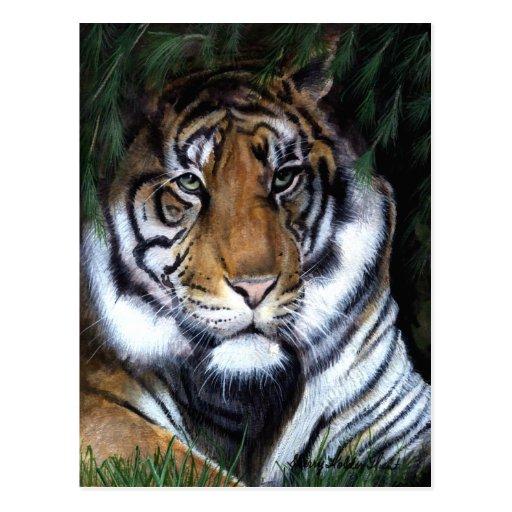 Postal de la pintura del tigre