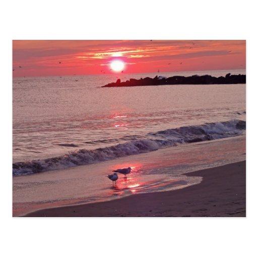 Postal de la playa de la puesta del sol