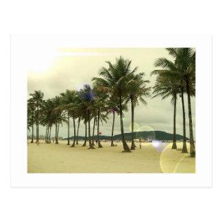 Postal de la playa de las palmeras