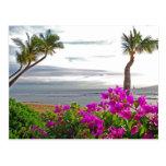 Postal de la playa de Maui