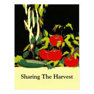 POSTAL de la producción de las verduras del