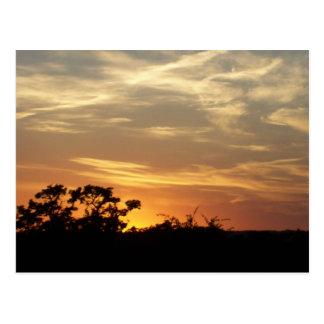 Postal de la puesta del sol de Bandera Tejas