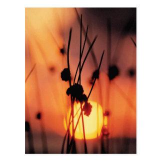 postal de la puesta del sol de la acuarela