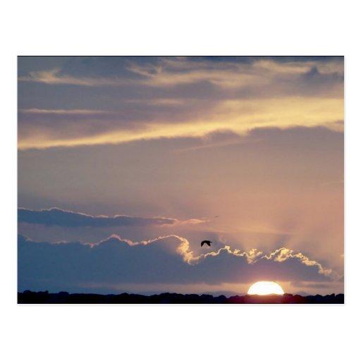 Postal de la puesta del sol de la playa