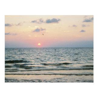 Postal de la puesta del sol de la playa de Clearwa