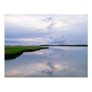 Postal de la puesta del sol de la región pantanosa