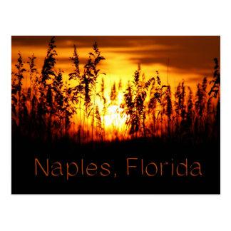 Postal de la puesta del sol de Nápoles la Florida