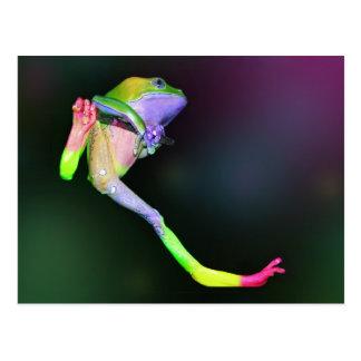 Postal de la rana del arco iris
