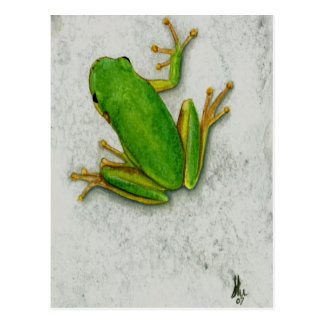 Postal de la rana verde