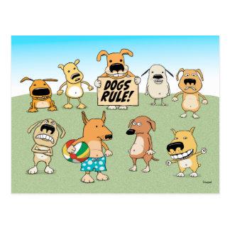 Postal de la regla de los perros