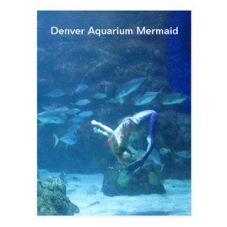 Postal de la sirena del acuario de Denver
