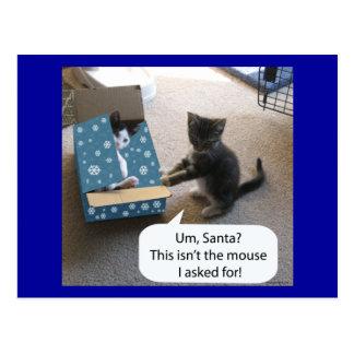 Postal de la sorpresa del navidad del gatito