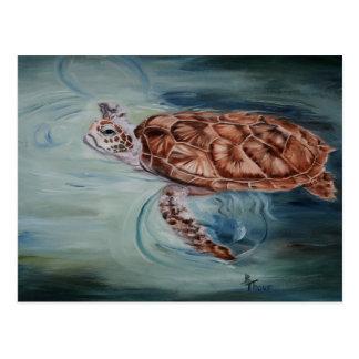 Postal de la tortuga de mar verde