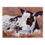 Postal de la vaca del bebé