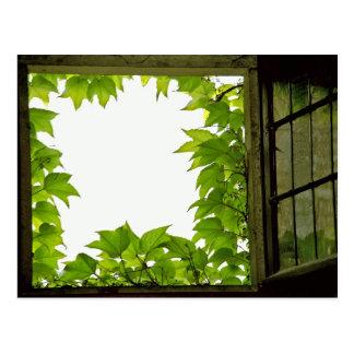 Postal de la ventana