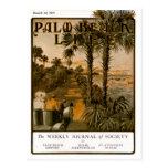 Postal de la vida #17 del Palm Beach