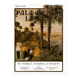 Postal de la vida 17 del Palm Beach