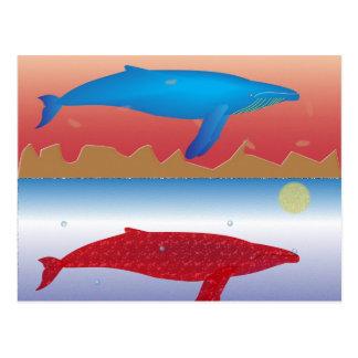 Postal de las ballenas