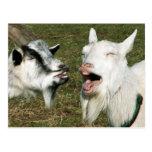 Postal de las cabras