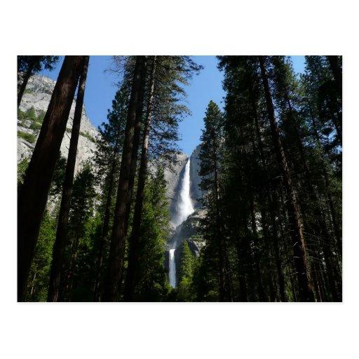 Postal de las cataratas de Yosemite y de maderas