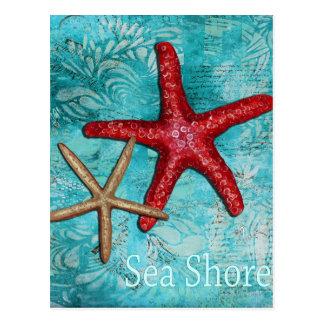 Postal de las estrellas de mar de la orilla de mar