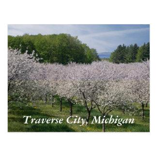 Postal de las flores de cerezo