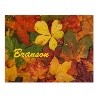 Postal de las hojas de otoño de Branson Missouri