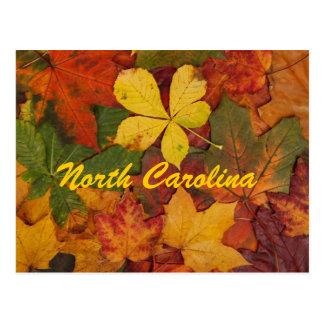 Postal de las hojas de otoño de Carolina del Norte