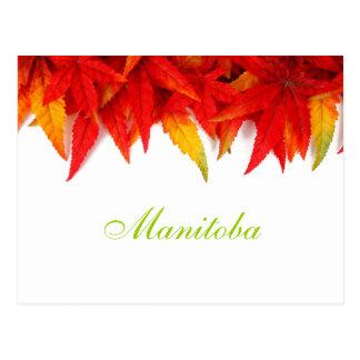 Postal de las hojas de otoño de Manitoba